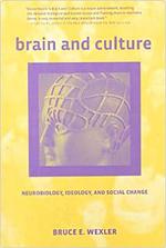 brain-and-culture