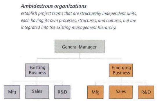 ambidextrous-organization